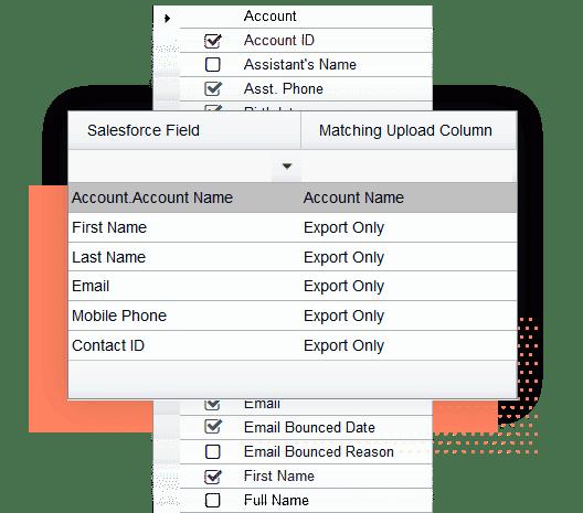 Find Salesforce IDs